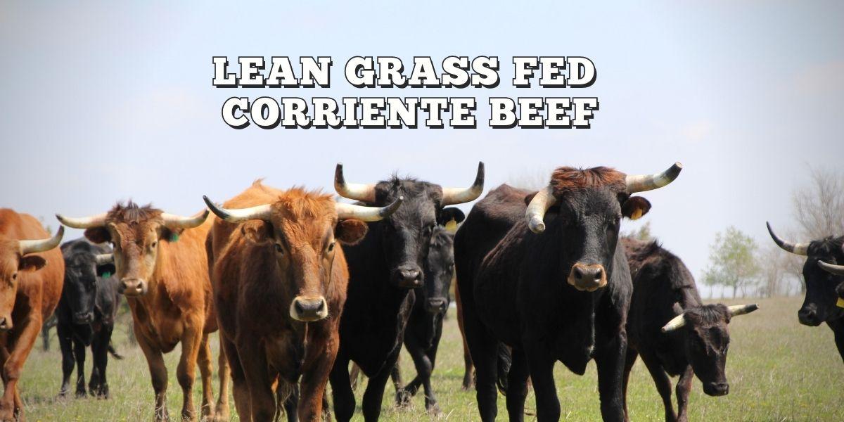Yoke S Ranch Lean Grass Fed Beef